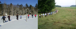 groups walking near Great Bay