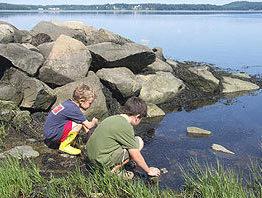 kids exploring Great Bay