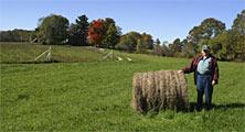 farmer with hay bale